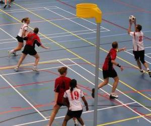 Puzzle Le korfbal, également appelé balonkorf, est un sport d'équipe joue entre deux équipes qui cherchent à introduire un ballon dans un panier.