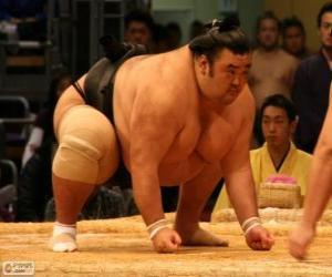 Puzzle Le lutteur de sumo prête au combat