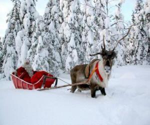 Puzzle Le Père Noël dans son traîneau avec un renne sur la neige
