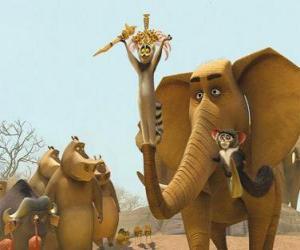 Puzzle Le roi Julian, le Ring-tailed lemur avec d'autres animaux