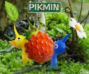 Puzzle Les êtres étranges Pikmin