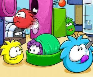 Puzzle Les animaux de compagnie Puffles dans le Club Penguin