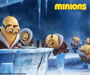 Puzzle Les Minions en Antarctique