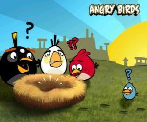 Puzzle Les oiseaux de découvrir que quelqu'un a volé les oeufs du nid