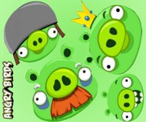 Puzzle Les porcs de Angry Birds