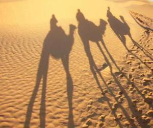 Puzzle Les trois Rois Mages à dos de chameaux sur le chemin de Bethléem