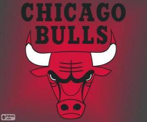 Puzzle Logo Chicago Bulls, équipe de la NBA. DivisionCentrale,ConférenceEst