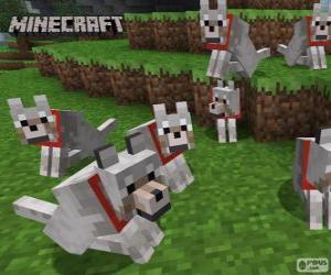 Puzzle Loups de Minecraft