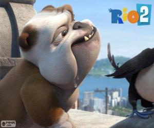 Puzzle Luiz dans le film Rio 2