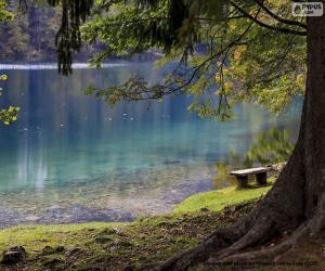 Puzzle Méditation au lac