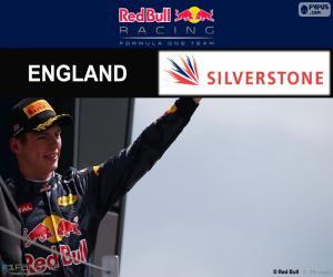 Puzzle M. Verstappen, GP G-Bretagne 2016