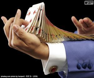 Puzzle Magicien, tour de carte