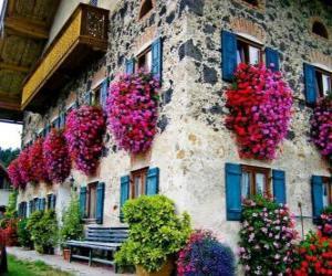 Puzzle Maison au printemps avec des fleurs aux fenêtres
