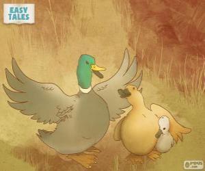 Puzzle Mama canard protège le vilain petit canard
