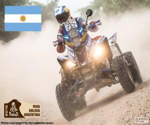 Puzzle Marcos Patronelli, Dakar 2016