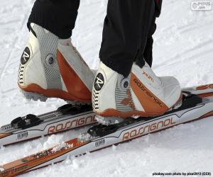 Puzzle Matériel ski de fond