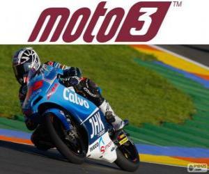 Puzzle Maverick Viñales, champion du monde 2013 de Moto3