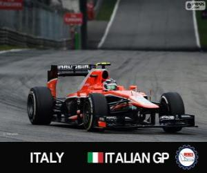 Puzzle Max Chilton - Marussia - Monza, 2013