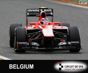 Puzzle Max Chilton - Marussia - Spa-Francorchamps, 2013