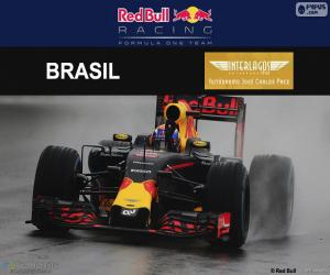 Puzzle Max Verstappen, GP Brésil 2016