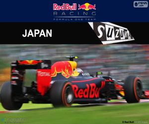 Puzzle Max Verstappen, GP du Japon 2016