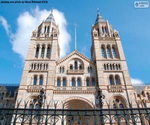 Puzzle Musée d'histoire naturelle de Londres
