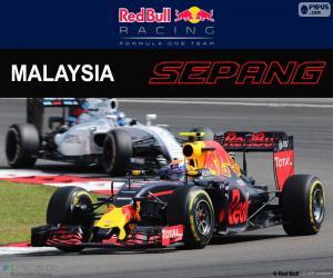 Puzzle M.Verstappen, GP de Malaisie 2016
