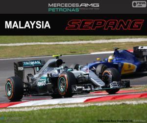 Puzzle N. Rosberg, GP de Malaisie 2016