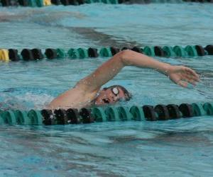 Puzzle Nageur pratiquant la nage libre ou crawl dans la voie d'une piscine de compétition