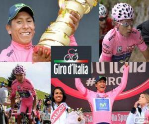 Puzzle Nairo Quintana, Giro 2014