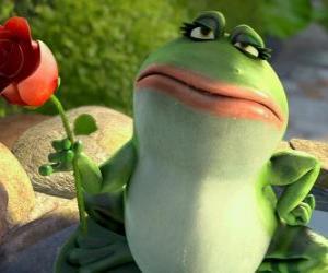 Puzzle Nanette, la grenouille de jardin