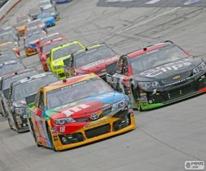 Puzzle NASCAR Sprint Cup Series