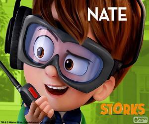 Puzzle Nate, Cigognes et Cie