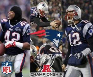Puzzle New England Patriots champion AFC 2011