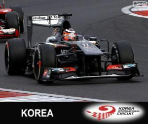 Puzzle Nico Hülkenberg - Sauber - Circuit International de Corée, 2013