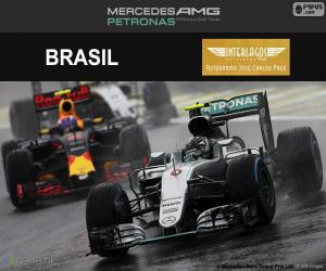 Puzzle Nico Rosberg, GP Brésil 2016