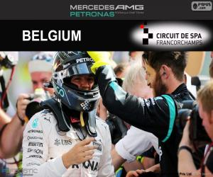 Puzzle Nico Rosberg, GP de Belgique 2016