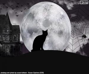 Puzzle Nuit d'Halloween
