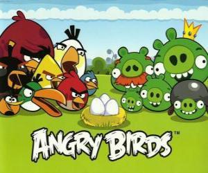 Puzzle Oiseaux, œufs et cochons verts dans Angry Birds