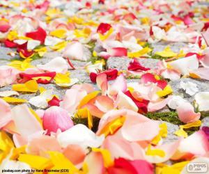 Puzzle Pétales de rose, mariage