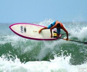 Puzzle Paddle surf
