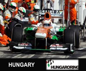 Puzzle Paul di Resta - Force India - Hungaroring, 2013