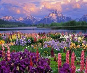 Puzzle Paysage au printemps