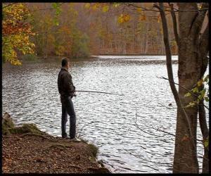 Puzzle Pêche - Pêcheur en rivière dans un paysage forestier