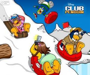 Puzzle Penguins en traîneau