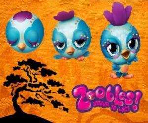 Puzzle Petit oiseau Zooble de Petagonia