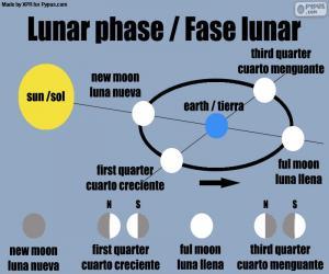 Puzzle Phase lunaire
