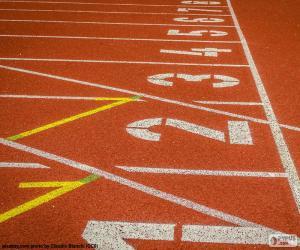 Puzzle Piste athlétisme 100 m
