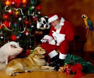 Puzzle Plusieurs animaux avec le Santa nourrir