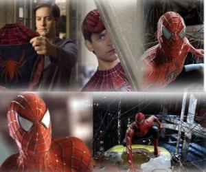 Puzzle Plusieurs images de Spiderman